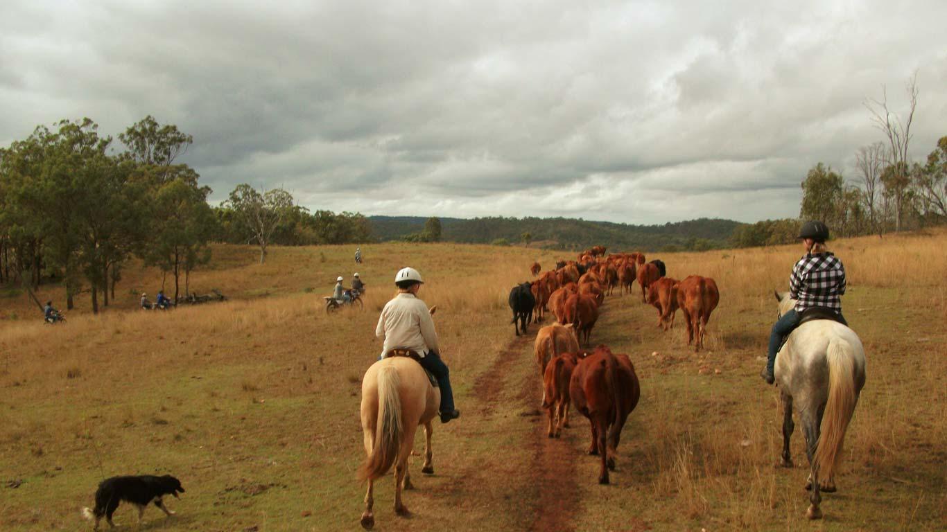 Farm & Travel Australia