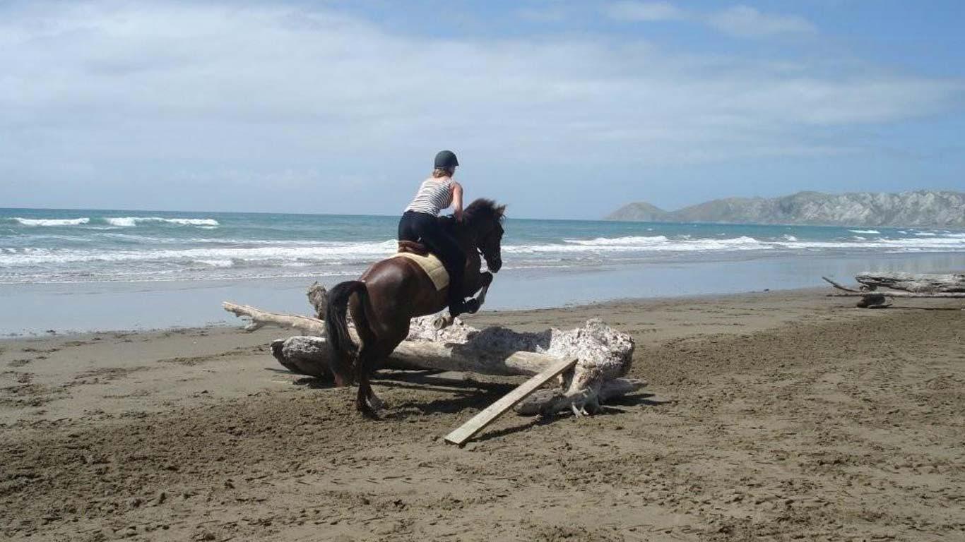 Ranchstay New Zealand