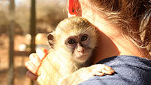 Wildlife Rescue Centre Namibia