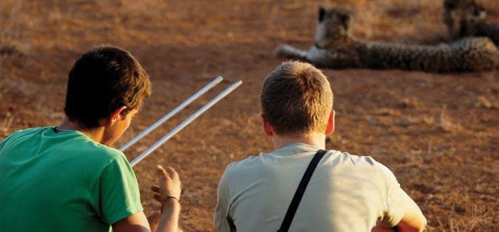 tips blåse jobber gepard