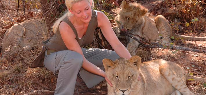 Zambia Lion Petting